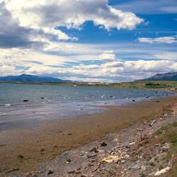Puerto Natales – Cielo e mare, il vento muove tutto