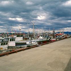 Puerto Natales – Pescherecci al port