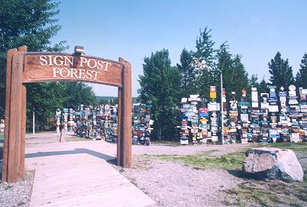 sign-post-forest