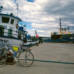 Puerto Natales – Pescherecci e bici