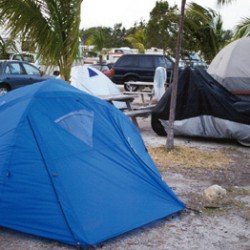 My tent, set up at Boyd's Campgound?a little windy, notice the palm trees blowing
