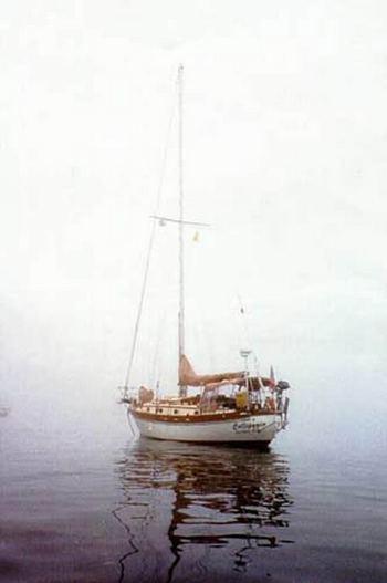 callipygia