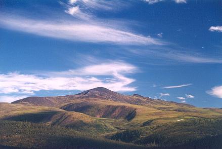 the-landscape